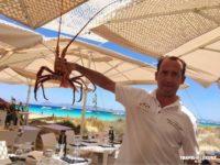 Restaurante Juan y Andrea en Formentera. Pescados y mariscos