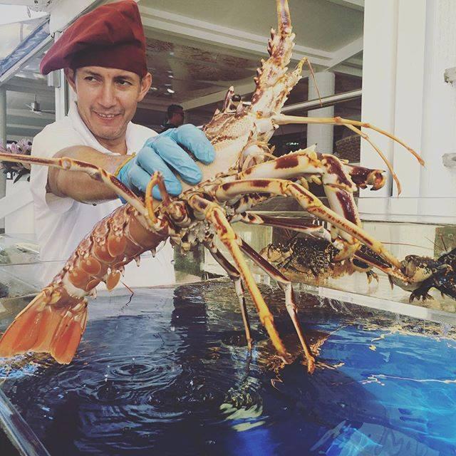 Restaurante Juan y Andrea en Formentera. Cocinero bogavante