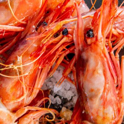 gastronomía mediterránea en Ses Illetes