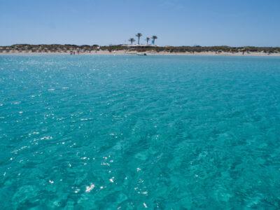 Praderas Posidonia Formentera